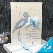 Special Delivery - Luxury New Baby Card